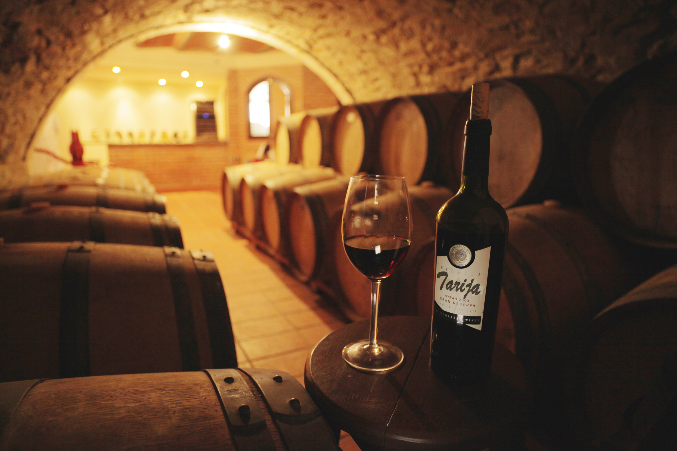 TARIJA bodega vinos